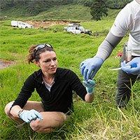 Phát hiện vi khuẩn cô lập carbon dưới lòng đất