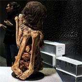 Phát hiện xác ướp Peru 1.000 năm tuổi trong tư thế ngồi co