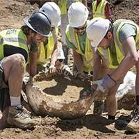 Phát hiện xương khủng long ba sừng 68 triệu năm tuổi