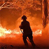 Phương pháp 50.000 năm tuổi có thể dập tắt cháy rừng Australia