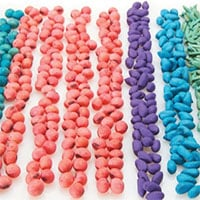 Phương pháp xử lý hạt giống bằng Neonicotinoid - lợi bất cập hại?