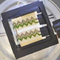Pin quang năng sinh học dán tường