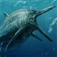Quái vật biển nằm trong quan tài đá suốt 170 triệu năm