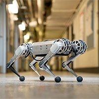 Robot 4 chân đầu tiên trên thế giới có thể nhảy Santo chất như dân hiphop