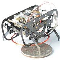 """Robot nặng 1,5 gam """"chấp"""" mọi kiểu địa hình nhờ bắt chước loài gián"""