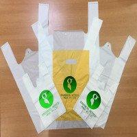 Sản xuất được túi nilon 100% hữu cơ có thể tự phân hủy, thân thiện môi trường
