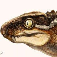Sinh vật kinh dị 71 triệu tuổi khiến siêu khủng long phải khiếp sợ