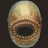 Sinh vật kinh dị này hóa ra là tổ tiên cổ nhất của con người