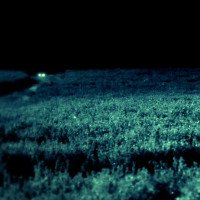 Skinwalker - Nơi kỳ lạ nhất Trái đất