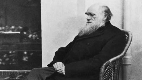 Sự thật về cái chết của nhà bác học Darwin