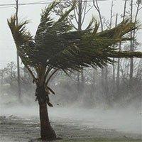Sức gió tới 300km/h, siêu bão