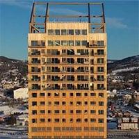 Tại sao gỗ có thể xây nhà chọc trời cao gần trăm mét?