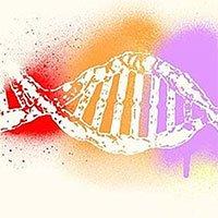 Tại sao máu khô lại được chọn để tách chiết ADN?