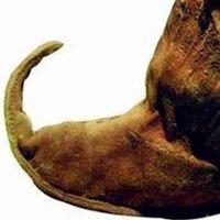 Tại sao mũi giày của người xưa thường hướng lên trên?
