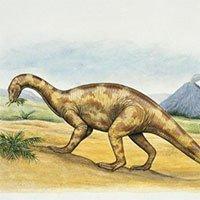 Tái tạo lại bộ não của loài khủng long tiết lộ những điều bất ngờ