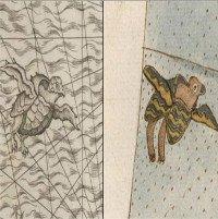Tập bản đồ thời Phục Hưng của bậc thầy về trí tuệ và... sao chép