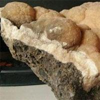 Thạch nhũ triệu năm có hình dáng giống hệt cây súp lơ
