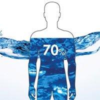 Thành phần nước trong cơ thể con người là như thế nào?