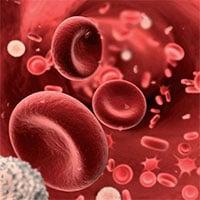 Thiếu oxy trong máu: Nguyên nhân, triệu chứng và cách điều trị