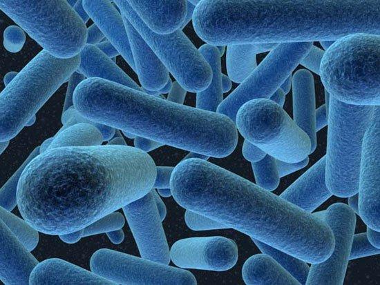 Thuốc mới giúp phòng, tiêu diệt vi khuẩn gây bệnh