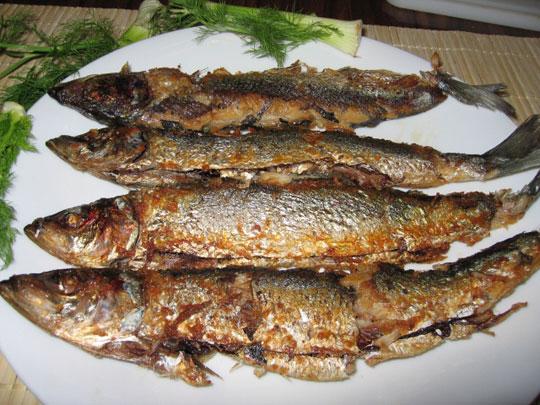 Thường xuyên ăn cá rán gia tăng nguy cơ đột quỵ