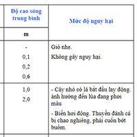 Tìm hiểu về bảng phân loại cấp độ gió và sóng ở Việt Nam