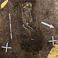 Tìm thấy 7 ngôi mộ 1.000 năm tuổi của người Viking ở Thụy Điển