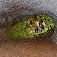 Tìm thấy hang khổng lồ