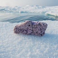 Tìm thấy thứ này ở Bắc Cực, giới khoa học đang lo lắng cực độ
