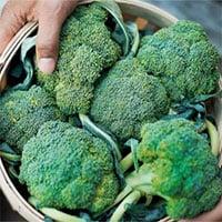 Top 11 thực phẩm tăng cường miễn dịch, phòng chống Covid-19 hiệu quả