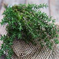 Top 8 loại thảo mộc và trái cây hữu ích trong phòng, chống Covid-19