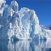 Trái đất ấm lên, cây có thể mọc lại ở Nam Cực