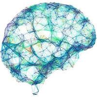 Trí tuệ nhân tạo biến hoạt động của não thành lời nói