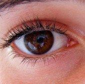 Triển vọng về ghép võng mạc điện tử cho người mù
