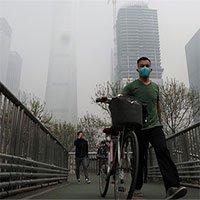 Trồng cây cuồng nhiệt, Bắc Kinh biến thành cái bẫy ô nhiễm khổng lồ?