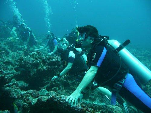Trong tương lai con người có thể hô hấp dưới nước