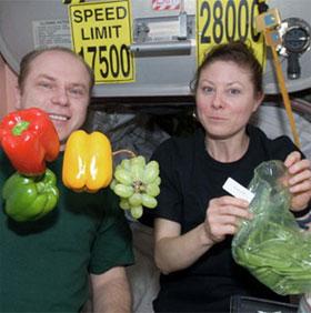 Trồng và thu hoạch rau trên trạm không gian quốc tế