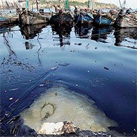 Trung Quốc phát triển bọt sinh học mới giúp tách dầu và nước