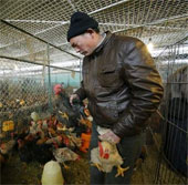 Trung Quốc thêm 10 ca nhiễm cúm H7N9 trong 1 ngày