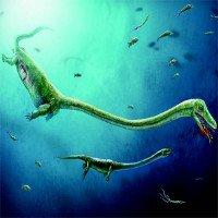 Trung Quốc tìm ra hóa thạch quái vật biển sống trước khủng long