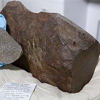 Úc: 4 năm cày cục phá khối đá không xong, đem cho mới biết là vật cực quý 4,6 tỷ năm tuổi