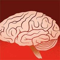 Vật liệu nối não người với AI để tạo ra siêu trí tuệ