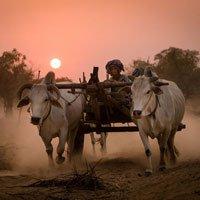 Vẻ đẹp bình dị của Việt Nam trong bộ ảnh Đông Nam Á