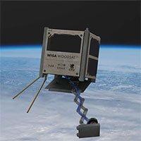 Vệ tinh gỗ đầu tiên trên thế giới sắp phóng lên không gian