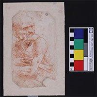 Vi khuẩn và nấm kỳ lạ được phát hiện trên bản vẽ của Leonardo da Vinci