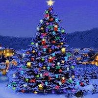 Vì sao có truyền thống trang trí và thắp sáng cây Noel?