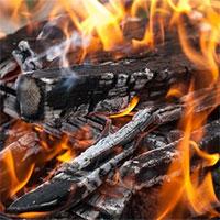 Vì sao gỗ nổ tanh tách trong đám cháy?