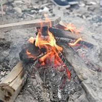 Vì sao khi đốt củi lại có tiếng nổ lép bép?
