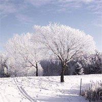 Vì sao khi tuyết rơi thì ấm, tuyết tan thì lạnh?
