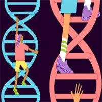 Vì sao không nên kiểm tra IQ bằng xét nghiệm gene?